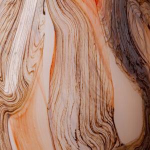 Apricot Earth
